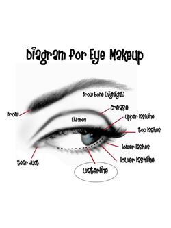 eyemakeup diagram